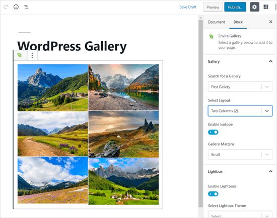 Envira Gallery Fotoğraf Galerisi için En İyi WordPress Bloğu