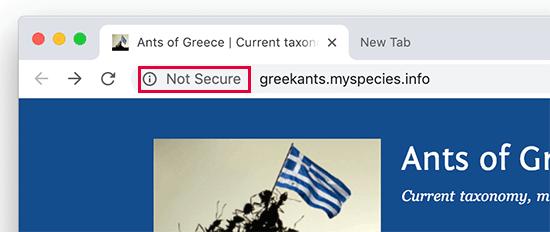 Google Chrome web tarayıcısında gösterilen etiket güvenli değil