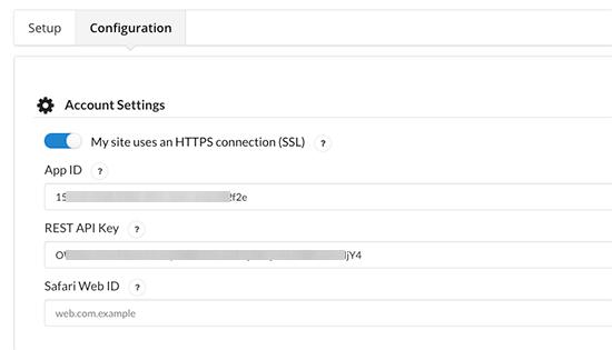 API Anahtarlarını Yapıştır