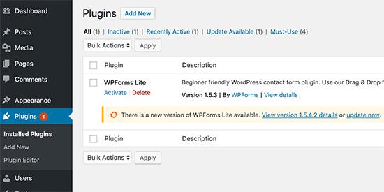 WordPress eklentilerini güncelleyin