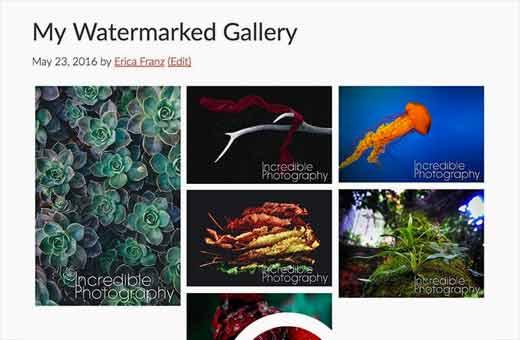 Filigranlı görüntülerle WordPress'te resim galerisi
