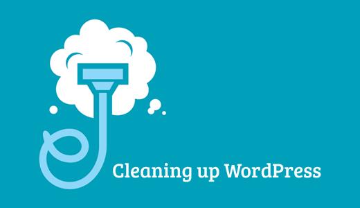 WordPress Veritabanını Temizleme
