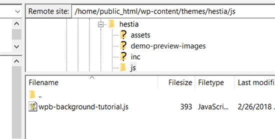 Javascript dosyanızı yükleyin