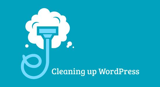 WordPress'i Temizleme