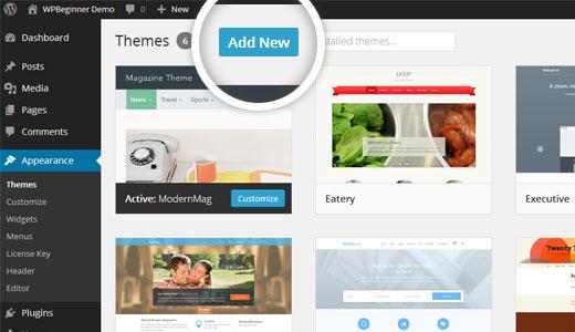 WordPress'e Yeni Tema Ekleme