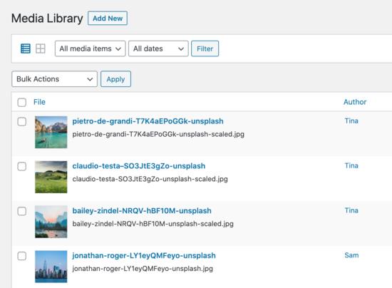 Yönetici kullanıcısının;  kütüphane görünümü