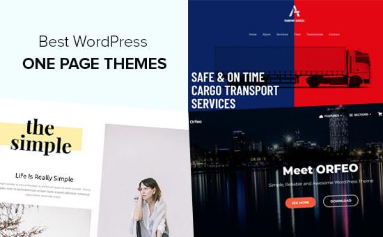 En İyi Bir Sayfa WordPress Temaları