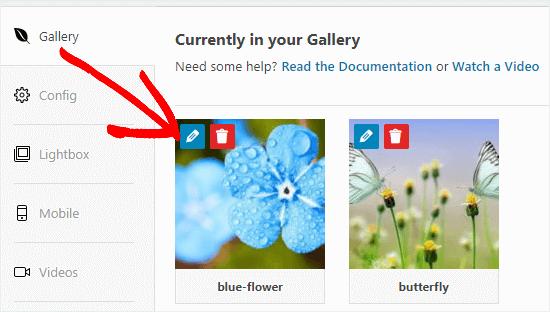 Galerinizdeki bir resmi düzenlemek için Düzenle düğmesini tıklayın