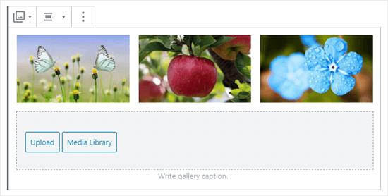 Galerideki üç resim (kelebekler, elma ve mavi çiçekler)