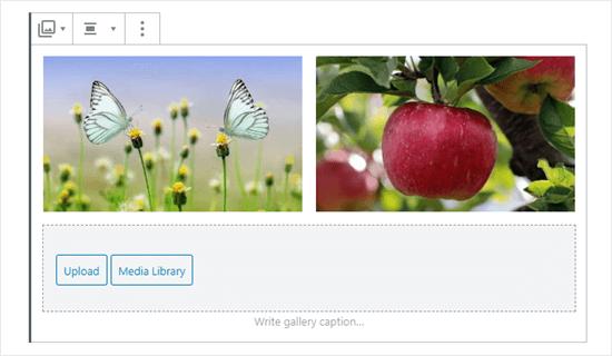 Galerideki iki resim (kelebekler ve elma)
