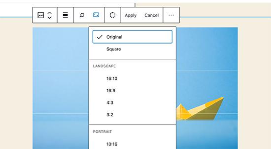 WordPress 5.5'te satır içi görüntü düzenleme