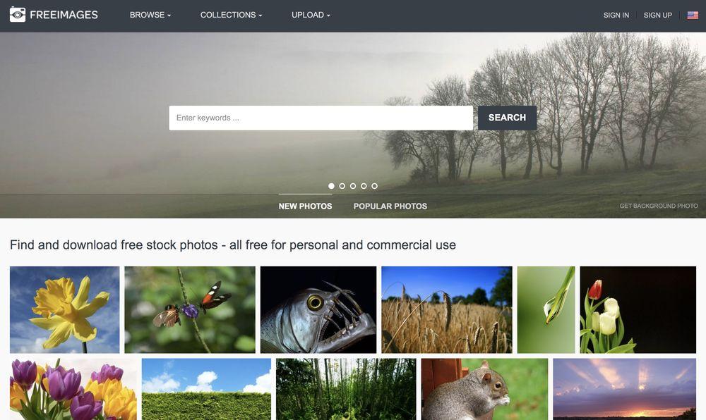 freeimages yüksek çözünürlüklü ücretsiz stok fotoğraflar wpexplorer