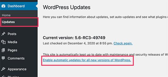 Başlıca WordPress sürümleri için otomatik güncellemeleri etkinleştirin