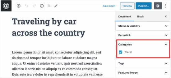WordPress düzenleyicide kategorileri kısıtlayın