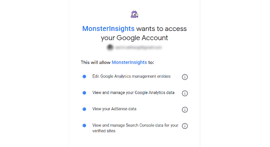 monsterinsights'ın google hesabına erişmesine izin ver