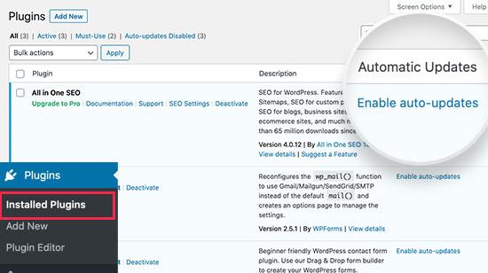 WordPress eklentileri için otomatik güncellemeleri etkinleştirin