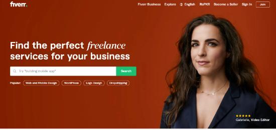 wordpress için Fiverr özel logo