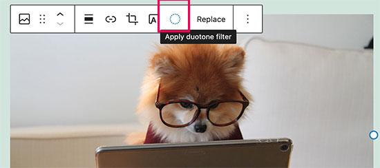 WordPress 5.8'deki görüntülere çift ton filtre uygulama